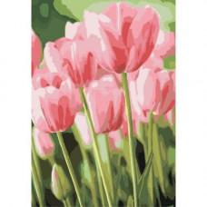 Картина за номерами Ідейка Весняні тюльпани 50 x 35 KHO2069