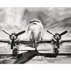 Картина за номерами Ідейка Мрія про висоту 50 x 40 (КНО2518)