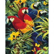 Картина за номерами Ідейка Різнобарвні папуги (КНО4028)