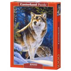 Пазлы  Castorland Волк , 1000 элементов (С-104062)