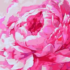 Картина по номерам Идейка Розовый пион 2 30х30 (КНО2949)