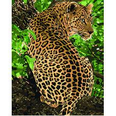 Картина по номерам Идейка Леопард 50 x 40 см (KHO4101)